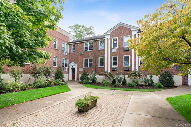 705 Palmer Court 1F, Mamaroneck, NY 10543 (MLS #H6070277) :: Kendall Group Real Estate | Keller Williams