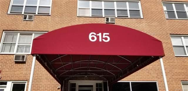 615 Palmer Road #102, Yonkers, NY 10710 (MLS #H6070278) :: McAteer & Will Estates | Keller Williams Real Estate