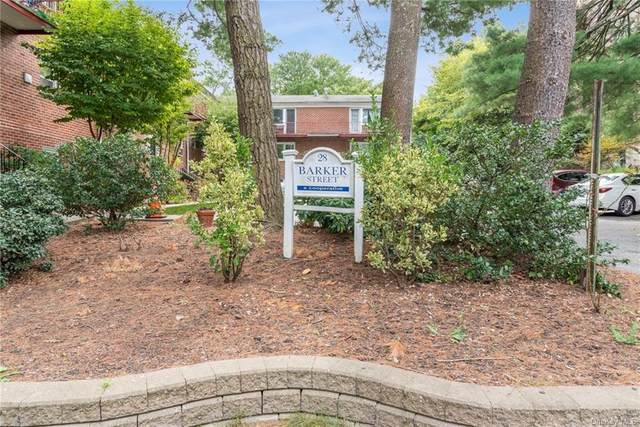 28 Barker Street B2, Mount Kisco, NY 10549 (MLS #H6070401) :: Mark Boyland Real Estate Team