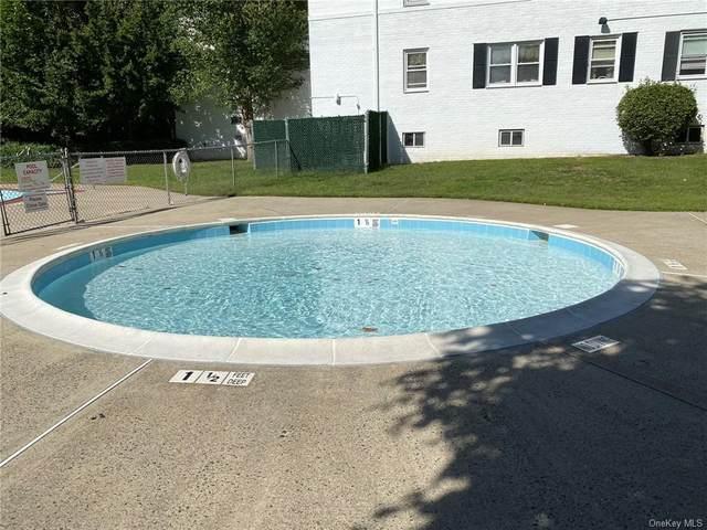 91 Avon Circle D, Rye Brook, NY 10573 (MLS #H6070459) :: Nicole Burke, MBA | Charles Rutenberg Realty