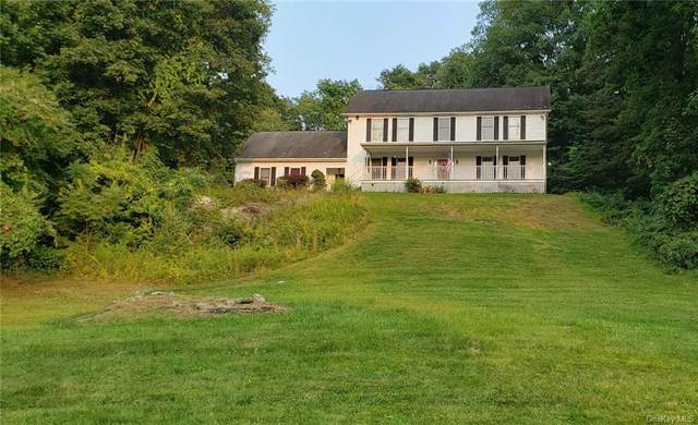 926 W Dover Road, Pawling, NY 12564 (MLS #H6070642) :: William Raveis Baer & McIntosh