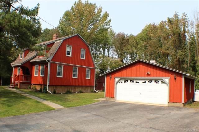 224 Pine Island Turnpike, Warwick, NY 10990 (MLS #H6070654) :: The Home Team
