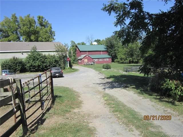2051 State Route 94, Salisbury Mills, NY 12577 (MLS #H6070656) :: William Raveis Baer & McIntosh