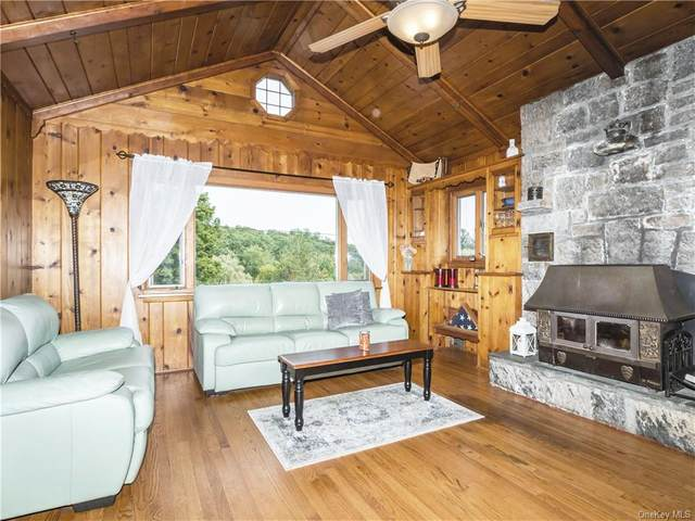 35 Beekman Drive, Carmel, NY 10512 (MLS #H6070710) :: William Raveis Baer & McIntosh