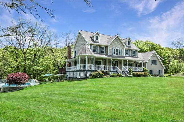 256 Hortontown Road, Hopewell Junction, NY 12533 (MLS #H6070975) :: William Raveis Baer & McIntosh