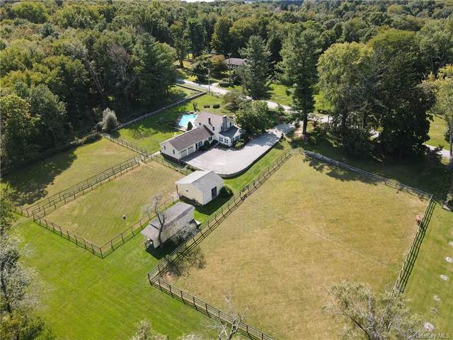 56 Nelson Boulevard, Brewster, NY 10509 (MLS #H6071014) :: William Raveis Baer & McIntosh