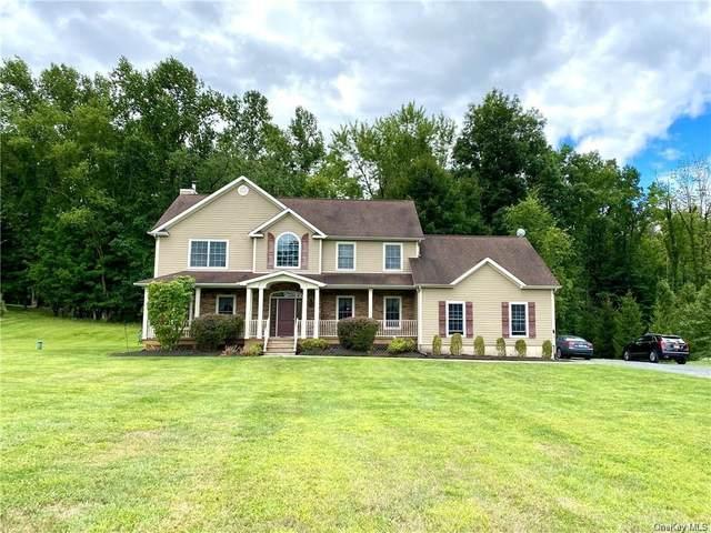 193 Pine Island Turnpike, Warwick, NY 10990 (MLS #H6071084) :: William Raveis Baer & McIntosh