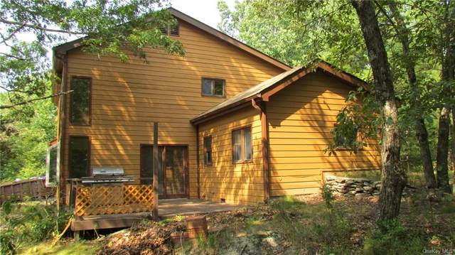 72 Barkit Kennel Road, Pleasant Valley, NY 12569 (MLS #H6071144) :: Frank Schiavone with William Raveis Real Estate