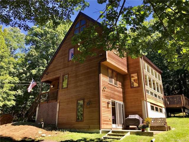 4 Spies Road, New Paltz, NY 12561 (MLS #H6071319) :: Cronin & Company Real Estate