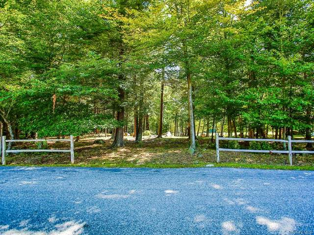 Rapp Road, Monticello, NY 12701 (MLS #H6071344) :: William Raveis Baer & McIntosh