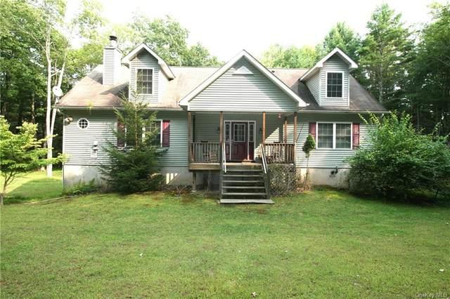 373 Mathias Weiden Drive #75, Narrowsburg, NY 12764 (MLS #H6071360) :: Kevin Kalyan Realty, Inc.