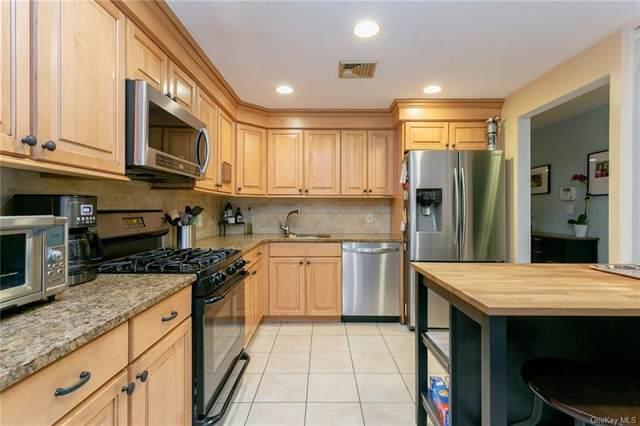 217 Martling Avenue, Tarrytown, NY 10591 (MLS #H6071375) :: Laurie Savino Realtor