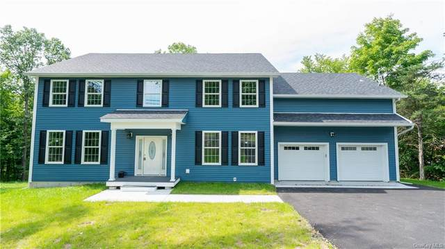 105 State Route 208, New Paltz, NY 12561 (MLS #H6071478) :: William Raveis Baer & McIntosh