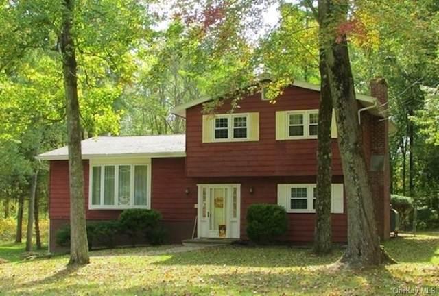 22 Woodland Drive, New Paltz, NY 12561 (MLS #H6071595) :: McAteer & Will Estates | Keller Williams Real Estate