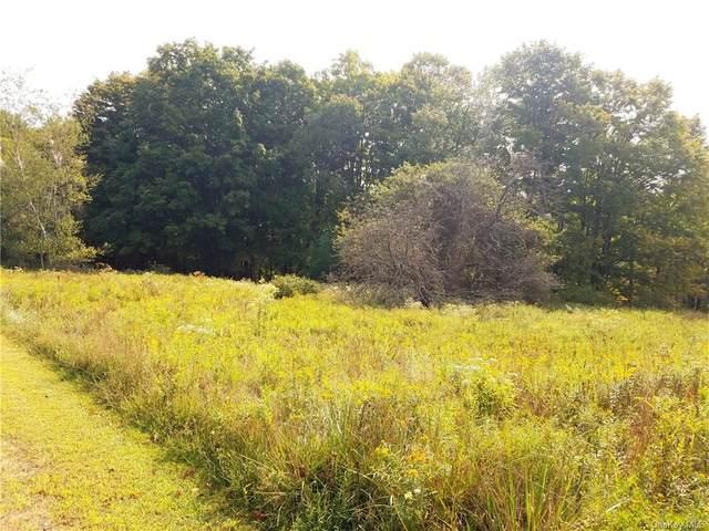 Foster Road, White Lake, NY 12786 (MLS #H6071611) :: William Raveis Baer & McIntosh