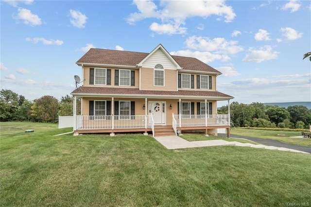 25 Trotter Lane, Rock Tavern, NY 12575 (MLS #H6071643) :: Mark Seiden Real Estate Team