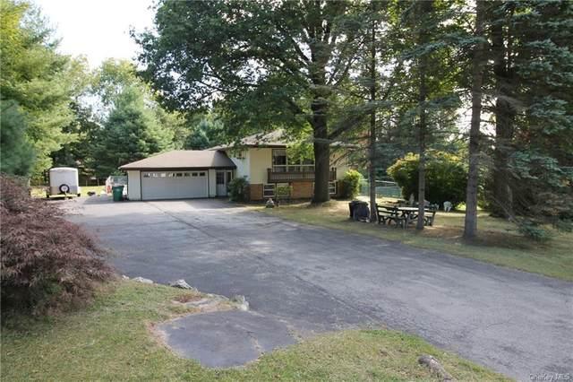 97 Edgehill Drive, Wappingers Falls, NY 12590 (MLS #H6071667) :: Marciano Team at Keller Williams NY Realty