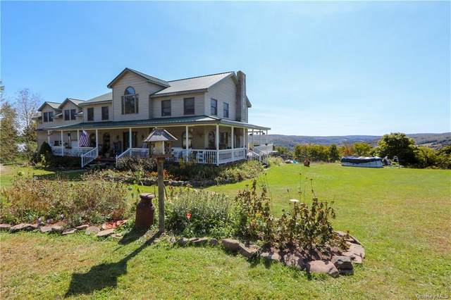 163 Skyline Drive, Livingston Manor, NY 12758 (MLS #H6071669) :: Cronin & Company Real Estate