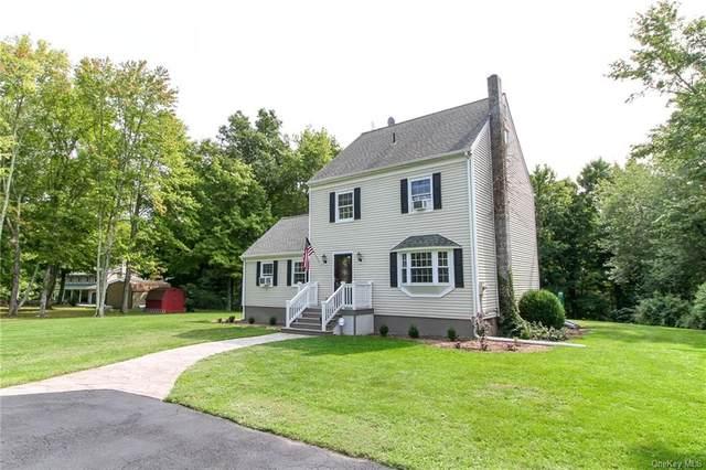 362 Brimstone Hill Road, Pine Bush, NY 12566 (MLS #H6071689) :: Cronin & Company Real Estate
