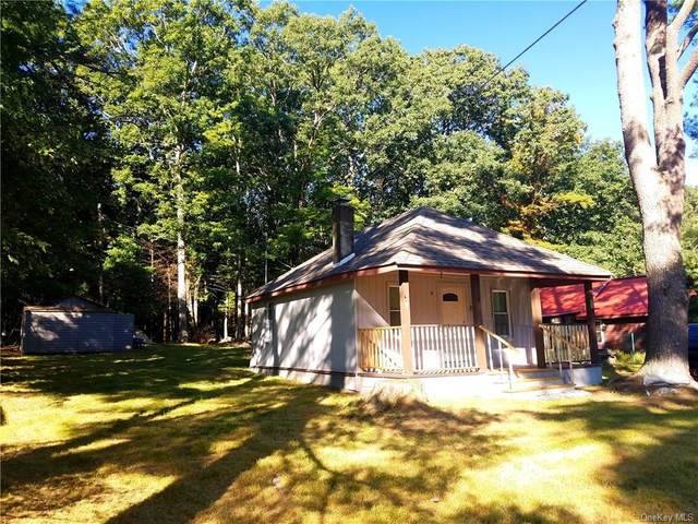 225 Yulan Barryville Road, Barryville, NY 12719 (MLS #H6071720) :: Nicole Burke, MBA | Charles Rutenberg Realty