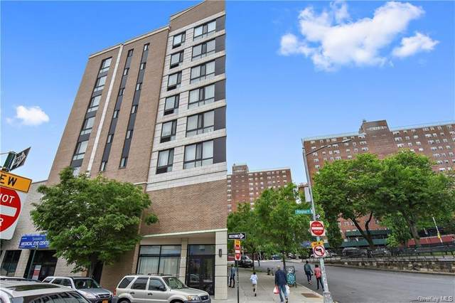 150 Featherbed Lane 5A, Bronx, NY 10452 (MLS #H6071816) :: McAteer & Will Estates | Keller Williams Real Estate