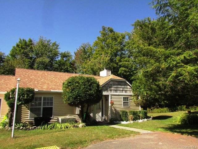39 Hidden Ridge Terrace, Monticello, NY 12701 (MLS #H6071965) :: Nicole Burke, MBA   Charles Rutenberg Realty