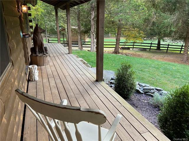 42 Browning Road, Hyde Park, NY 12538 (MLS #H6072176) :: Kendall Group Real Estate | Keller Williams