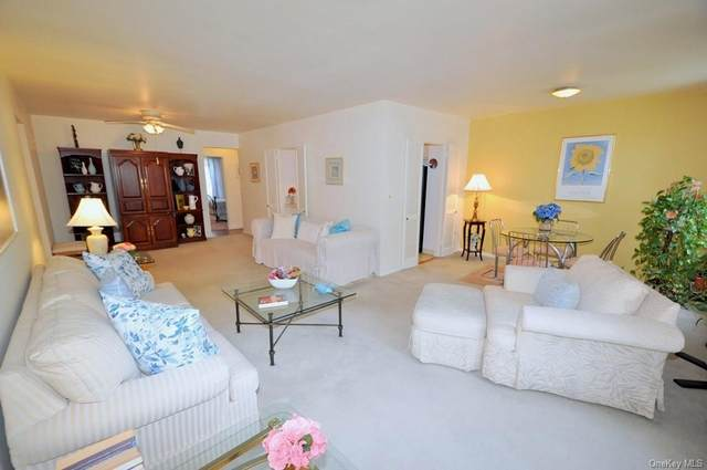 177 E Hartsdale Avenue 4Y, Hartsdale, NY 10530 (MLS #H6072185) :: William Raveis Baer & McIntosh