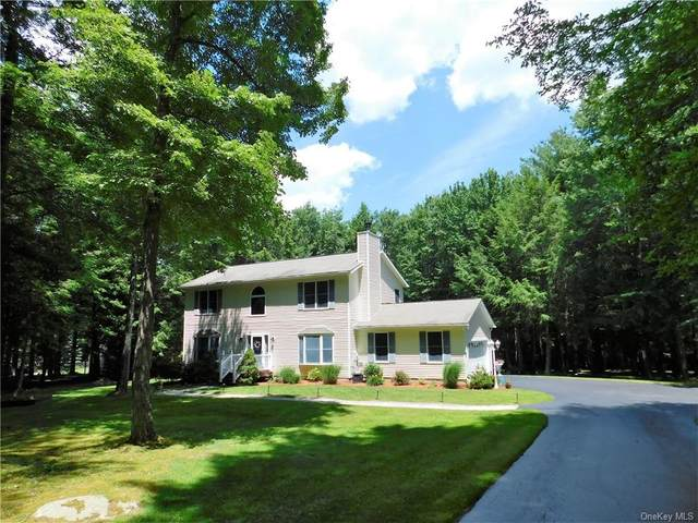 2612 Ulster Heights Road, Woodbourne, NY 12788 (MLS #H6072198) :: William Raveis Baer & McIntosh
