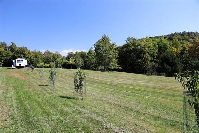 0 State Route 52, Jeffersonville, NY 12723 (MLS #H6072204) :: Frank Schiavone with William Raveis Real Estate