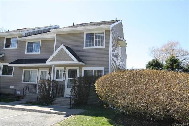 301 Covington Green Lane, Patterson, NY 12563 (MLS #H6072311) :: William Raveis Baer & McIntosh