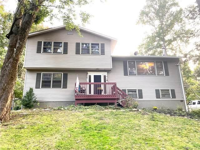 62 Iron Mountain Road, Warwick, NY 10990 (MLS #H6072318) :: William Raveis Baer & McIntosh