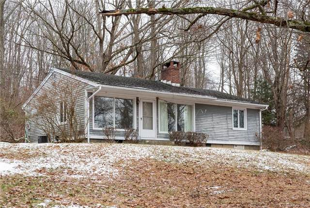 189 Mooney Hill Road, Holmes, NY 12531 (MLS #H6072340) :: Mark Seiden Real Estate Team