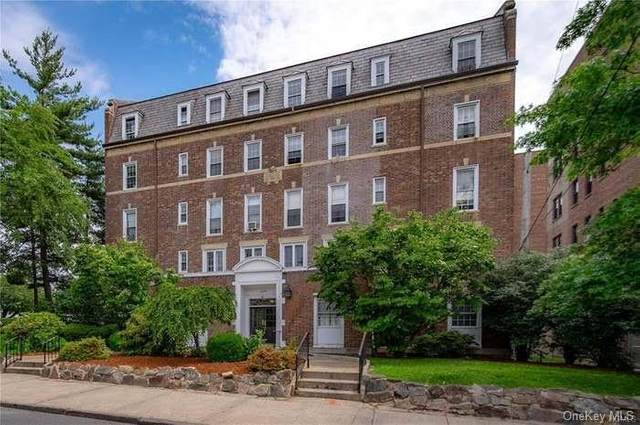208 Centre Avenue 5A, New Rochelle, NY 10805 (MLS #H6072443) :: William Raveis Baer & McIntosh