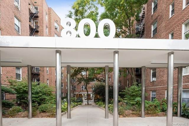 800 Grand Concourse 3SN, Bronx, NY 10451 (MLS #H6072512) :: Nicole Burke, MBA | Charles Rutenberg Realty
