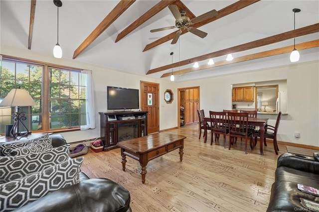 13 Plains Drive, New City, NY 10956 (MLS #H6072541) :: Nicole Burke, MBA | Charles Rutenberg Realty