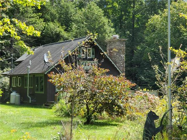 50 Holly Road, Napanoch, NY 12458 (MLS #H6072543) :: William Raveis Baer & McIntosh