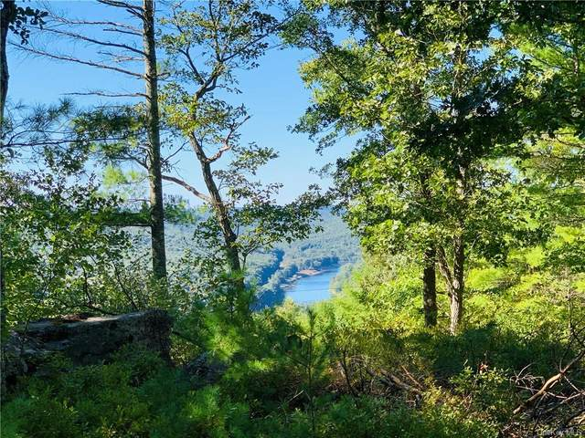 Eagle View Road, Narrowsburg, NY 12764 (MLS #H6072578) :: Nicole Burke, MBA | Charles Rutenberg Realty