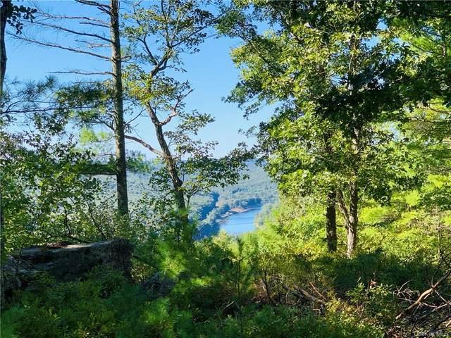 Eagle View Road, Narrowsburg, NY 12764 (MLS #H6072578) :: Kevin Kalyan Realty, Inc.