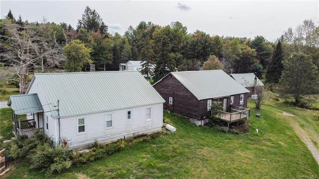17 Schumway Road, Neversink, NY 12765 (MLS #H6072628) :: William Raveis Baer & McIntosh