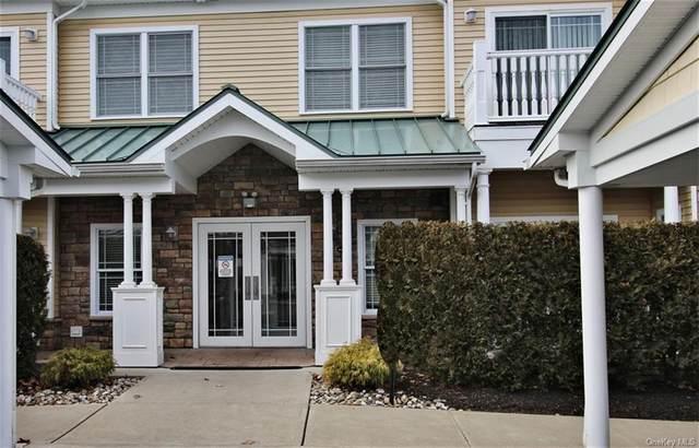 1103 Views Way, Pomona, NY 10970 (MLS #H6072651) :: Cronin & Company Real Estate