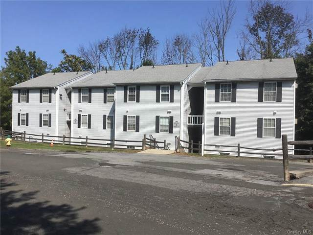 9 Lexington Hill #2, Harriman, NY 10926 (MLS #H6072686) :: William Raveis Baer & McIntosh
