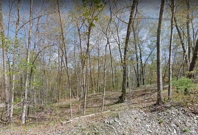 120 Forest Drive, Hyde Park, NY 12538 (MLS #H6072743) :: Nicole Burke, MBA   Charles Rutenberg Realty