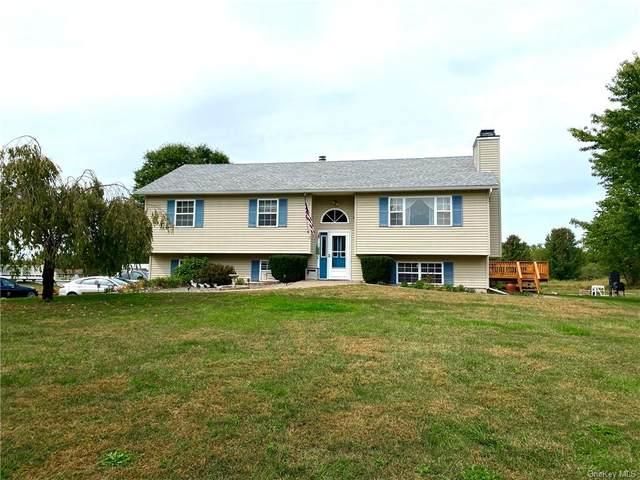 5 Hill Road, Wallkill, NY 12589 (MLS #H6072811) :: Cronin & Company Real Estate