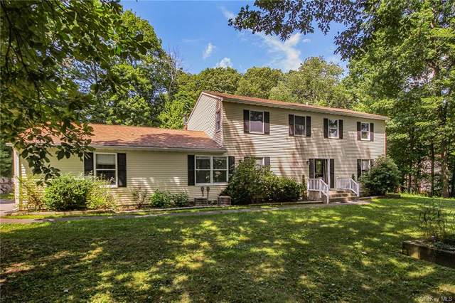 28 Woodcliff Drive, Stormville, NY 12582 (MLS #H6072830) :: William Raveis Baer & McIntosh