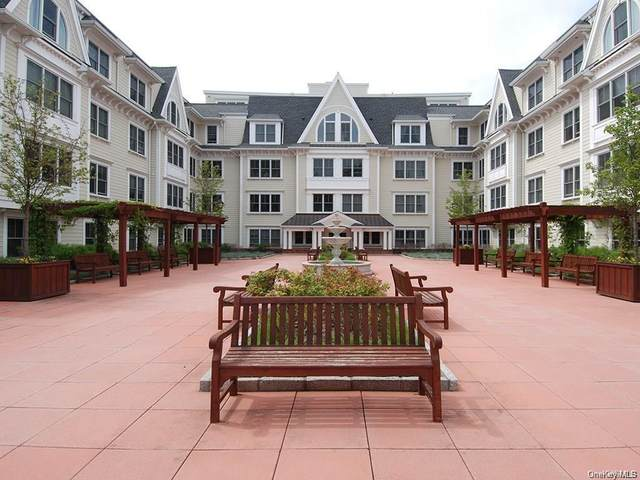 225 Stanley Avenue #213, Mamaroneck, NY 10543 (MLS #H6072854) :: William Raveis Baer & McIntosh
