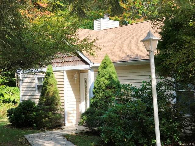 177 Hidden Ridge Drive, Monticello, NY 12701 (MLS #H6072855) :: The Home Team