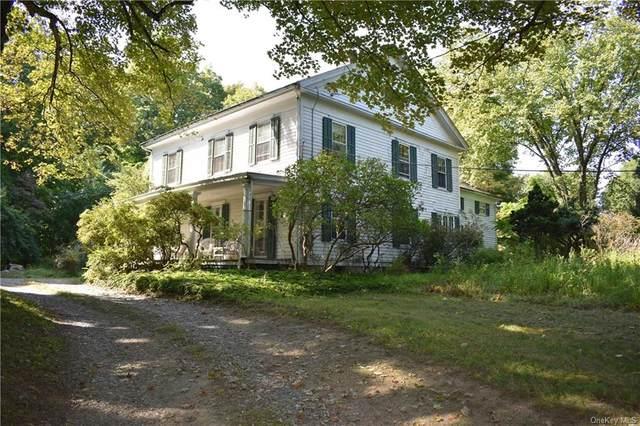 256 Linden Avenue, Red Hook, NY 12571 (MLS #H6072876) :: Kendall Group Real Estate | Keller Williams
