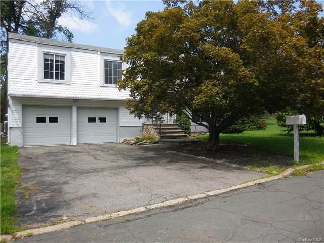 419 Philo Street, New Windsor, NY 12553 (MLS #H6072878) :: Cronin & Company Real Estate