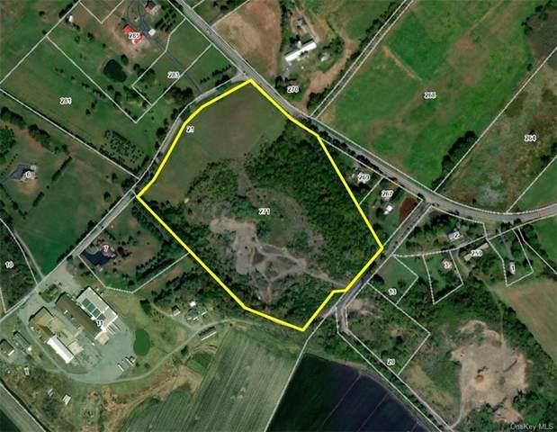271 Maple Avenue, Goshen, NY 10924 (MLS #H6072984) :: Cronin & Company Real Estate